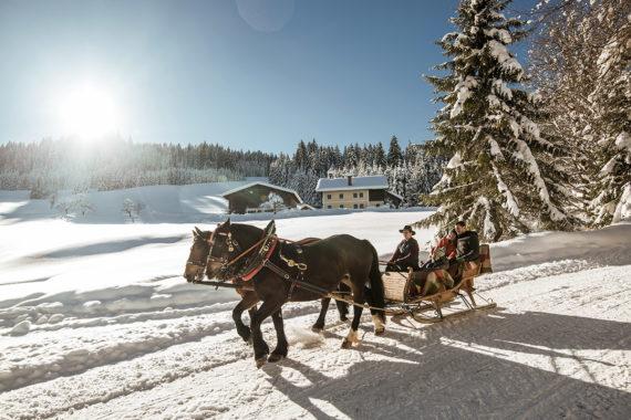 Pferdeschlittenfahrten im Salzburger Land