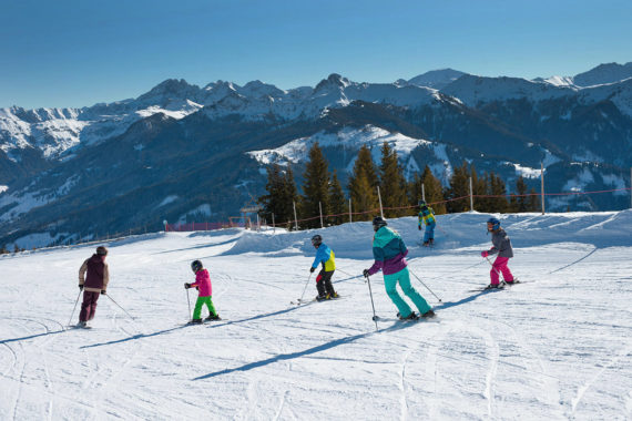 Skiurlaub im Großarltal, Ski amadé